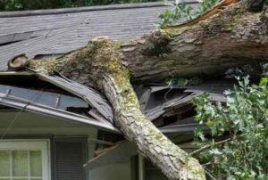 Storm Damage Roof Repair In Florence,SC
